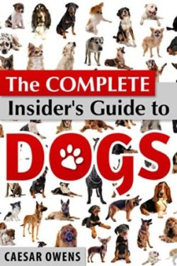 Dog Guide cover