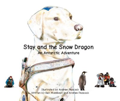 Stay Snow Dragon cover