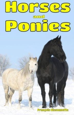 Horses Ponies cover